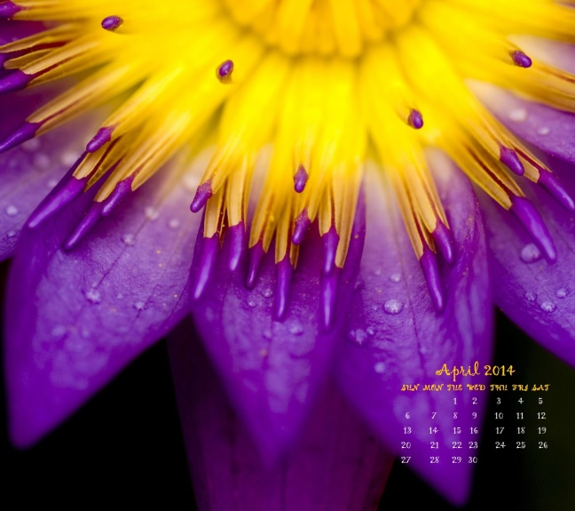 APR 2014 CALENDAR WALLPAPER
