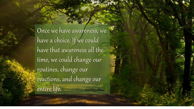 Don Miguel Ruiz = Awareness