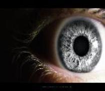 grey_vision-149x144-209x180